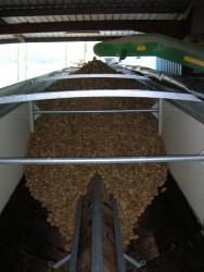 Produit de Transport de pommes de terre vrac
